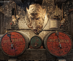 photography, pub, and butterbeer image