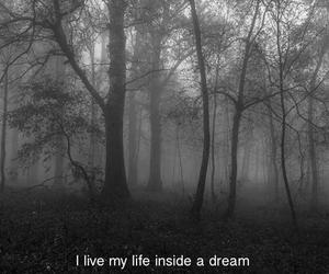 Dream, life, and dark image