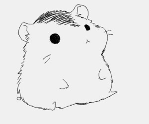 hamster, cute, and anime image