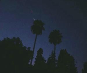 night, tree, and nature image