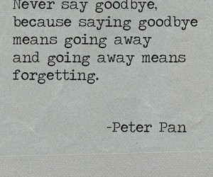 goodbye, forget, and peter pan image