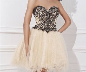 lace, short, and homecoming dress image