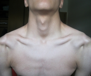 boy, collarbones, and muscles image