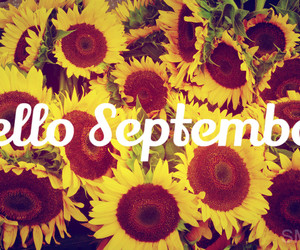 flores, September, and setembro image
