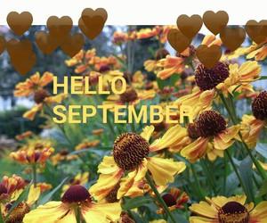 autumn, german, and hello image