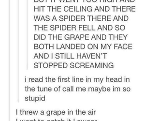 spider, tumblr, and call me maybe image