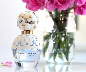 fragrance, perfume, and daisy dream image