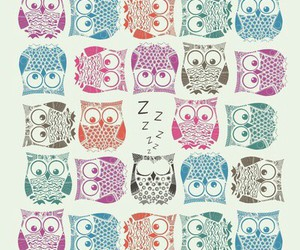 owl, colors, and wallpaper image