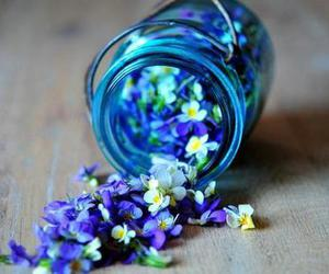 beautiful, flowers, and blue image