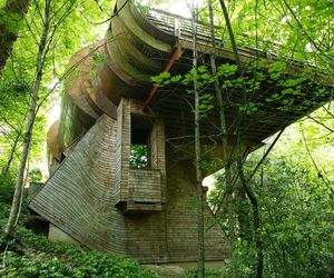 architecture and tree house image