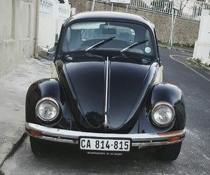 beetle, black, and car image
