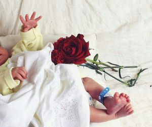 baby, rose, and cute image