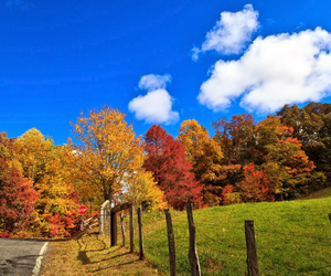 autumn, beautiful, and blue image