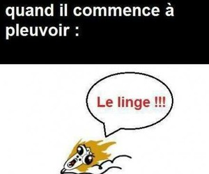french, funny, and mere image