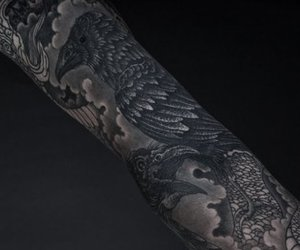 crow, raven, and sleeve image