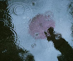 rain, photography, and umbrella image