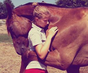 horse, animal, and hug image