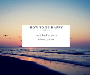 beach, birds, and how to be happy image