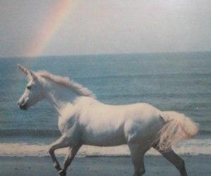 rainbow and unicorn image
