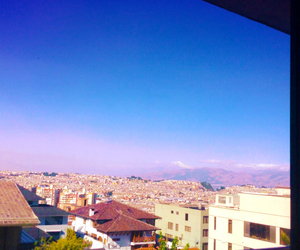 blue, pink, and quito image