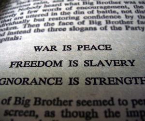 1984, ignorance, and literature image