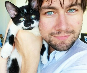 reign, torrance coombs, and cat image