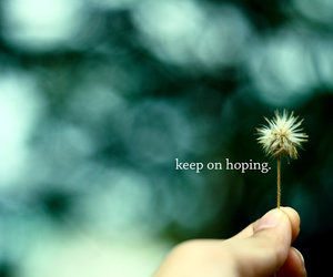 hope, quote, and flowers image