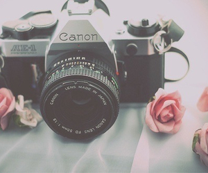 canon, camera, and rose image