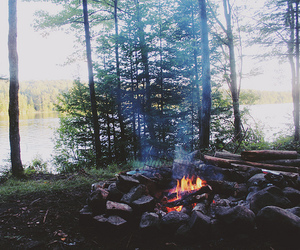 fire, forest, and lake image