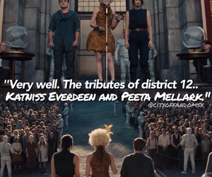 books, life, and the hunger games image
