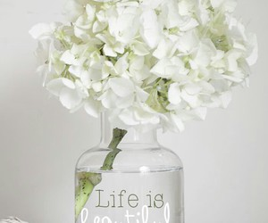 flowers, life, and white image
