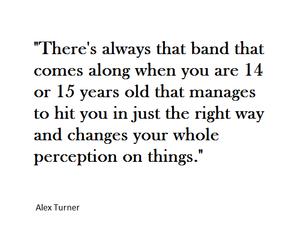 band, alex turner, and arctic monkeys image