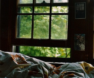 bed, window, and photography image