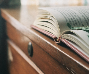 book, vintage, and hipster image