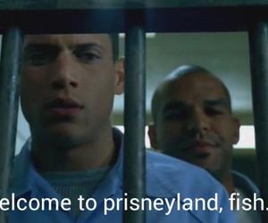 prison, prison break, and michael scofield image