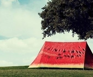 watermelon, tent, and nature image