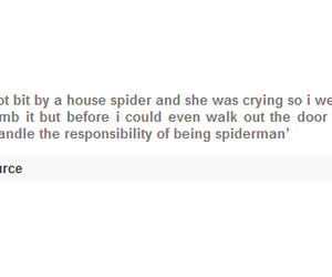 family, funny, and spider image