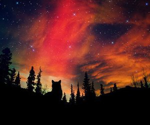 beautiful, colors, and stars image