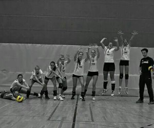 sport, team, and volleyball image