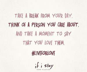 quote, if i stay, and love image