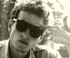 beauty and bob dylan image