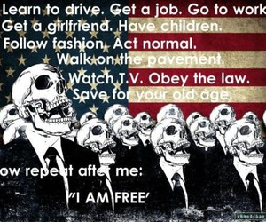 freedom, free, and america image