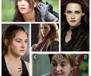bella swan, colpa delle stelle, and harry potter image