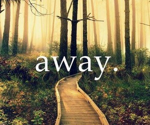 away, quote, and forest image