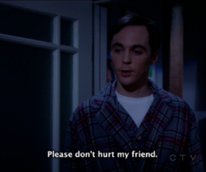 friends, sheldon cooper, and hurt image