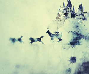 blue, harry potter, and remus lupin image