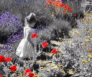 flowers, girl, and hope image