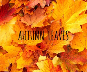 autumn, quotes, and leaves image