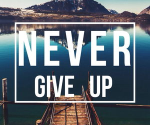 never, give, and up image
