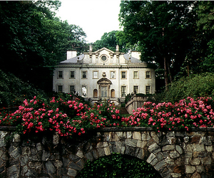 house, flowers, and mansion image